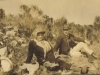 nellie-and-william-bisset-islays-parents-on-a-picnic-the-cape-c-1920