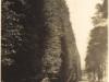 Vincent-Molteno-perthshire-aug-1936