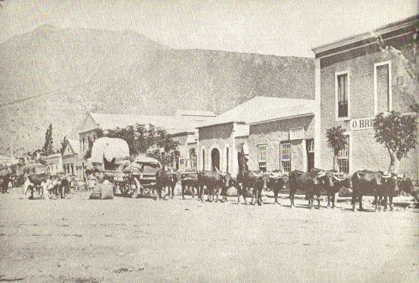 http://www.moltenofamily.net/wp-content/gallery/transport/ox-wagon-in-graaff-reinet-c-1875.jpg