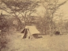 lenox-murrays-probably-tent-while-surveying-in-kenya-pre-1914