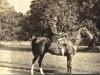 bessie-molteno-riding-at-glen-lyon-1914