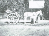 nelspoort-buggy-abt-a-century-ago