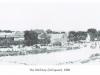 nelspoort-dorp-oxwagon-arriving-1868