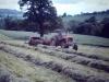 painswick-gathering-hay