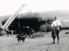parklands-haymaking-on-the-farm-before-the-1920s