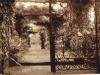 parklands-percy-molteno-standing-in-upper-pergola-1935