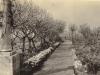 parklands-the-garden