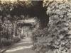 parklands-the-pergola-c-1912