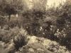 trevaldwyn-in-llandrindod-the-garden-may-freddie-parkers-nursing-home-c-1915