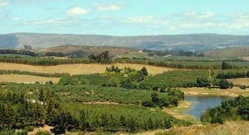 elgin-apple-farming-today-panoramic-view