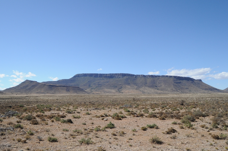karoo-veld-and-mountain