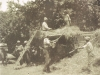 elgin-haymaking-in-the-apple-orchards1920s