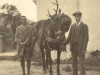 glen-lyon-deer-stalking-jervis-molteno-ghilly-with-the-bag-sept-1913