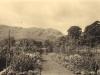 glen-lyon-house-the-garden