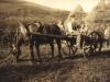 glen-lyon-making-haystacks-all-hard-at-work-july-1926