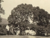 glenlyon-house-viewed-from-the-drive-august-1913