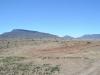 karoo-the-veld