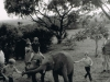 Marania-the-murray-children-playing-with-baby-elephant