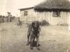 kenya-possibly-early-house-of-lenox-murrays