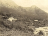 millers-point-mountains-behind-c-1900