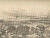 berg-river-valley-panoramic-view-19th-century
