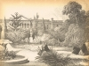 cape-town-botanical-gardens-19th-century