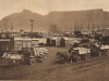 cape-town-docks-c-1900