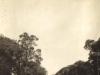 george-cape-province-c-1914