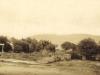 knysna-c-1914