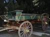 cart-horse-drawn
