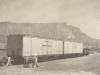 railway-trucks-for-fruit-exports-cape-town-docks-1956