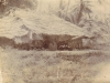 german-east-africa-campaign-1914-18-hidden-artillery-piece